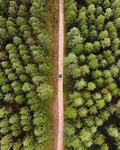 """""""Getting lost in all the right places 🌲""""  📷 via @wherenickygoes  @qldparks  #theoutdoorconnection #campingaustralia #exploreaustralia #weareexplorers #offroad #4x4 #campinggoals #camperlifestyle #campingadventures #stargazing #tent #campsite #campingwithdogs #tentdiaries #australian_vacations #beautifuldestinations #seeaustralia #explore #adventures #beautiful_world #travel #solotraveller #travelphotography #traveller #wander #offthebeatentrack #dogsofinstagram"""