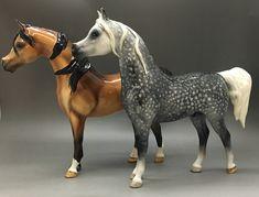 Handmade and custom glazed in Australia! Arabian Stallions, Horse Portrait, Brisbane Australia, Horses For Sale, Glazed Ceramic, Pony, Pottery, Ceramics, Handmade