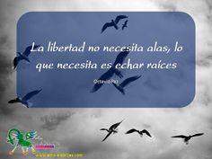 Frases celebres Octavio Paz 14