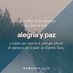 Que el Dios de la esperanza los llene de toda alegría y paz a ustedes que creen en él, paraque rebosen de esperanza por el poder del Espíritu Santo  Romanos 15.13