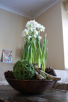 entrance or coffee table indoor garden with paperwhites, moss and natural organic materials. Designed by Sharlene Nielsen Homebrew Recipes, Front Entrances, Home Brewing, Indoor Garden, Table Settings, Natural Coffee, Organic, Nature, Plants