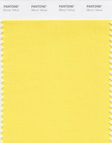 PANTONE Color Institute - Minion Yellow Swatch