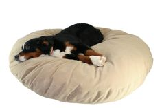 Supersoft Round Dog Pillow