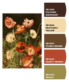 Living Room - Paint colors from Chip It! by Sherwin-Williams. Living Room - Paint colors from Chip It! by Sherwin-Williams.