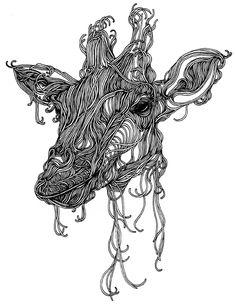 Animalia II