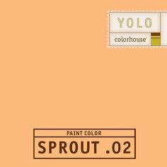 YOLO Colorhouse SPROUT .02:  Like the sweetness of summer melon.  A happy hue for your little person - boy or girl.  $35.95