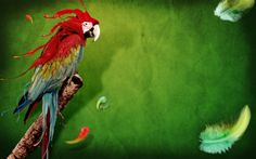 Animals PPT Backgrounds Templates - Download Free Animals ...