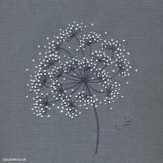 embroidery  -  cow parsley  -  french knots on linen