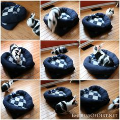 DIY Sweater Pet Bed - make your own in 1 hour and trying to get a rabbit to pose for a photo!