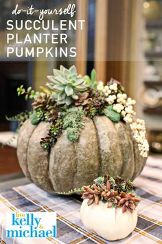 DIY Succulent Pumpkin Planter