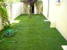 Création de gazon en jardin - Bègles (3)