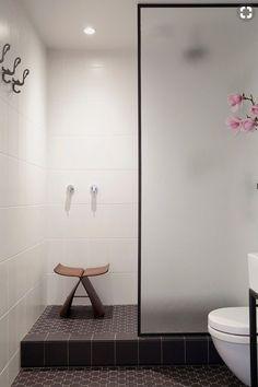 translucent glass door for shower/toilet