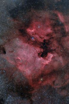Pelican Nebula (IC5070 and IC5067) in the Cygnus constellation.