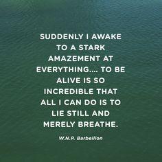 """Suddenly I awake to a stark amazement at everything.... To be alive is so incredible that all I can do is to lie still and merely breathe."" — W.N.P. Barbellion"