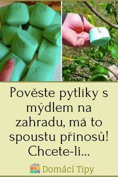 Pověste pytlíky s mýdlem na zahradu, má to spoustu přínosů! Chcete-li… #zahradu
