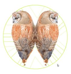 twin owls by Rebeca Losada - want to make 3d minitures inspired by this for my garden