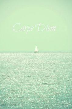 'Carpe Diem thinking of making a collage of this for a poster on my dorm wall because #mercyhurst 's moto is Carpe Diem