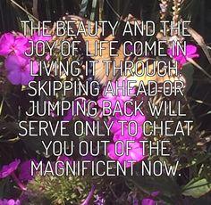 Pink Stuff, Joy Of Life, Cheating, Calm