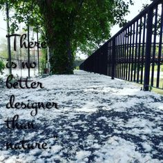 Check out my new PixTeller design!there is no better designer than nature. Tool Design, Sidewalk, Social Media, Nature, Check, Naturaleza, Side Walkway, Walkway, Social Networks