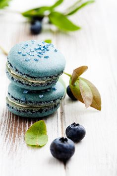 Blueberry macaroons by Kati Molin, via Dreamstime Just Desserts, Delicious Desserts, Dessert Recipes, Summer Desserts, Macaron Cookies, French Macaroons, Blue Macaroons, Macaroon Recipes, Blueberry