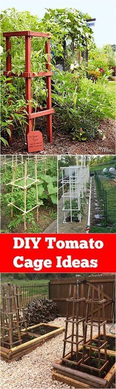 DIY Ideas for Tomato Cages- creative ideas, projects and tutorials to spice up your vegetable garden.