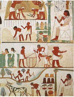 Agricultural scenes of threshing, a grain store, harvesting with sickles, digging, tree-cutting and ploughing from the tomb of Nakht, 18th Dynasty Thebes.