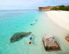 Take the ferry from Key West tothe Dry Tortugas for the whole day, breakfast + lunch included, snorkel, play in the water, explore Ft Jefferson photo of snorkeling at the dry tortugas