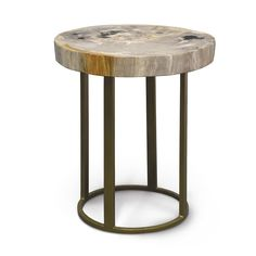 Palecek Petrified Wood Slice Table With Round Gold Base