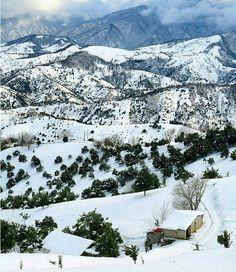 "#Green nature under the white #snow Amlash, Gilan Province, north of Iran  الثلج في قرية ""املش"" في شمال ايران"