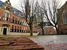 Het Provinciehuis – 'the Province House', home to the provincial government of Groningen since 1602. See more pics at:  http://mikestravelguide.com/revisiting-groningen-part-1/