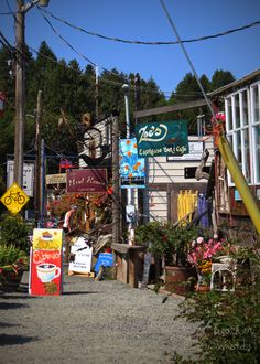 Cowichan Bay Cittaslow Community | swell conditions