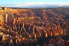 """americasgreatoutdoors:  """"The first sun rays at Bryce Canyon National Park in Utah cast light and shade over a stone forest of amazing rock formations. Photographer Daniel Madrigal was at the park to shoot this inspiring scene. """"The shadow, texture and..."""