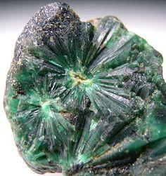Radial-grupos de cristales de esmeralda en una matriz de esquisto negro. Formación inusual de cristales que es diferente de un formaciones trapiche- Edith R.