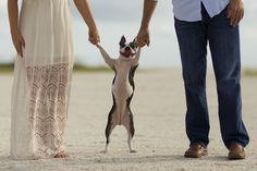 Engagement photo ideas, unique engagement photos, engagement photo with dog
