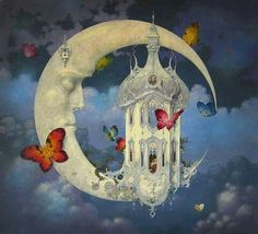 Butterflies and moon shine