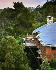 South Africa: The Tsala Treetop Lodge in Plettenberg Bay places its guests among 10 stone and glass lodges high above the Tsitsikamma Forest Villas, The Places Youll Go, Places To Go, Treehouse Hotel, Infinity Edge Pool, Infinity Pools, Cool Tree Houses, Bird Houses, Africa Travel