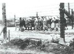 Krakow-Plaszów concentration camp