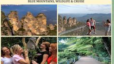 Blue Mountains Day Tours & Trip Packages