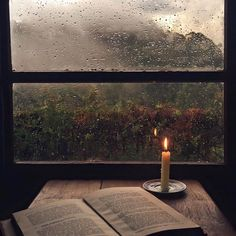 """""""Rainy days should be spent at home with a cup of tea and a good book."""" ~ Bill Watterson"""