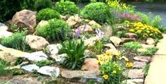 River rock landscaping landscaping with River Rock Dry River R. River rock landscaping landscaping with River Rock Dry River R. River Rock Landscaping, Hydrangea Landscaping, Mailbox Landscaping, Hillside Landscaping, Tropical Landscaping, Landscaping With Rocks, Small Garden Rocks, Rockery Garden, Dry River