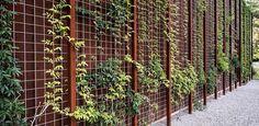 Trellis Gardening   Grow A Garden In The City With 7 Small Space Gardening Ideas
