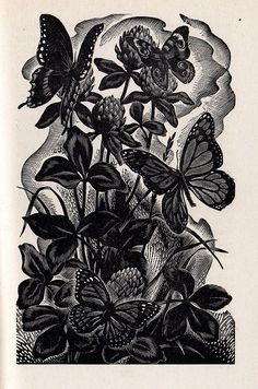 Wood Engraving – The Art of Nora Spicer Unwin