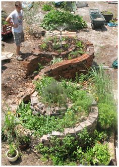Double spiral garden for herbs.  Space saving, beautiful raised beds using no dirt, just sands and composting materials to create new soils.  Check craigslist and freecycle.org groups nearby for free used bricks or stones to build it.