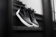 Renaissance for Filling Pieces 2014 Fall/Winter Trainers