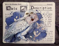 .: Pets of the Wizarding World: Owls by Picolo-kun