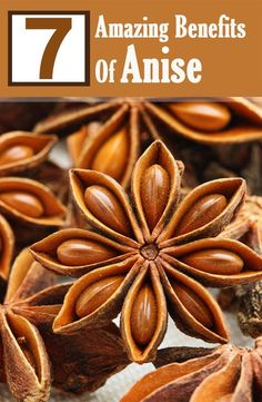 Anise is a medicinal herb which has been used as a spice traditionally. Given are the amazing benefits it offers for skin, hair & health.