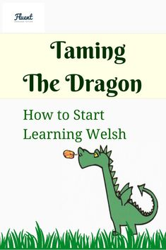 Taming the Dragon: My Welsh Language Learning Update by Fluent Language Welsh Language, Language Study, Learn Welsh, Welsh Words, Progress Report, Cymru, British, Family History, 3 Months