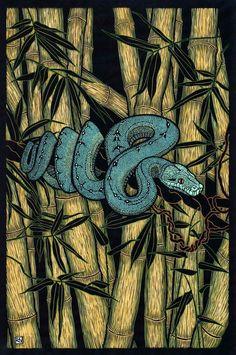 Green Tree Python by Rachel Newling. Hand-coloured linocut on handmade Japanese paper Woodcut Art, Linocut Prints, Art Prints, Block Prints, Snake Art, Scratchboard, Woodblock Print, Graphic Art, Art Drawings