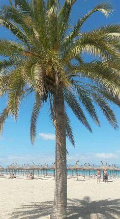 Beach El Arenal Mallorca 04.24.16