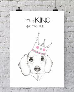 ILUSTRACJA  I'M KING OF THIS CASTLE